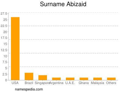 Surname Abizaid