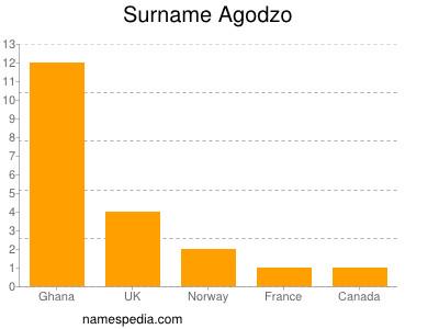Surname Agodzo
