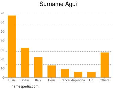 Surname Agui