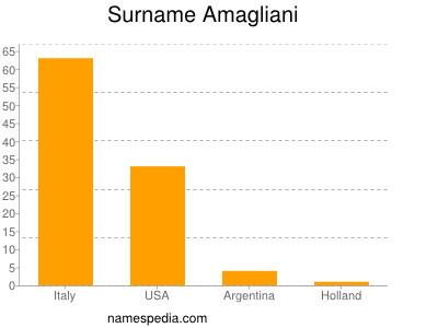 Surname Amagliani