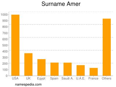 Surname Amer