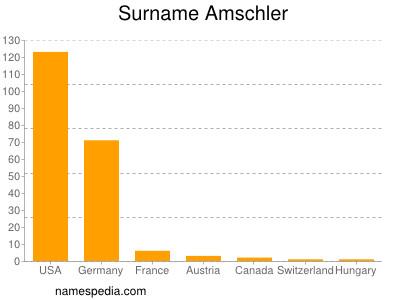 Surname Amschler