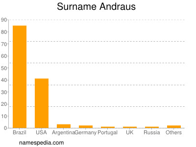 Surname Andraus