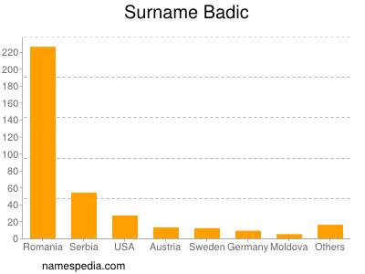 Surname Badic