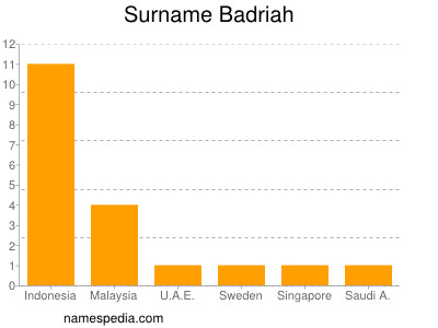 Surname Badriah