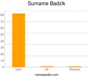 Surname Badzik