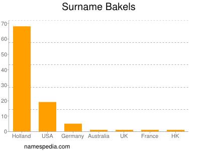 Surname Bakels