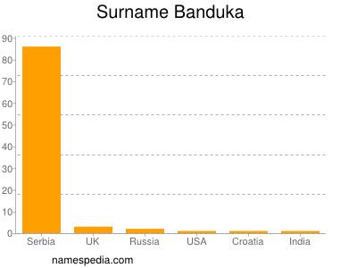 Surname Banduka