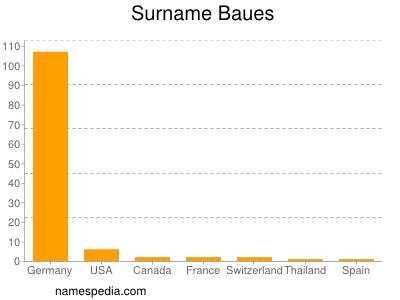 Surname Baues