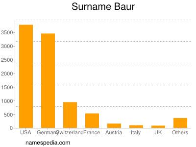 Surname Baur