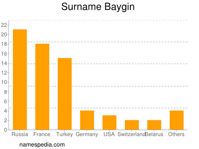 Surname Baygin