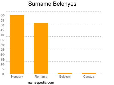 Surname Belenyesi