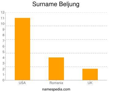 Surname Beljung