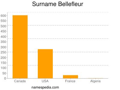 Surname Bellefleur