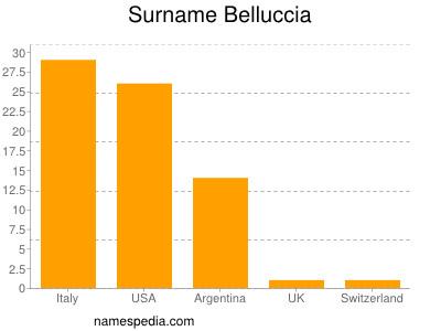 Surname Belluccia