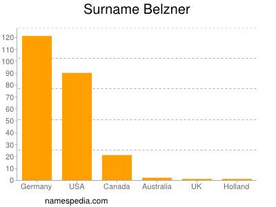 Surname Belzner