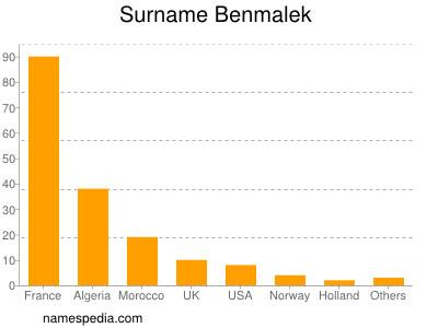 Surname Benmalek