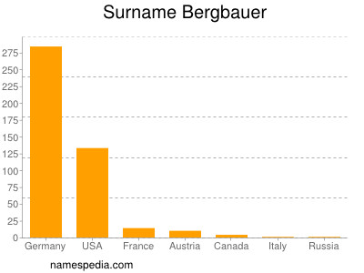 Surname Bergbauer