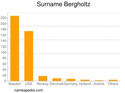 Surname Bergholtz