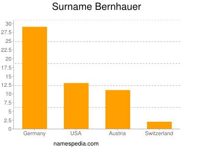Surname Bernhauer