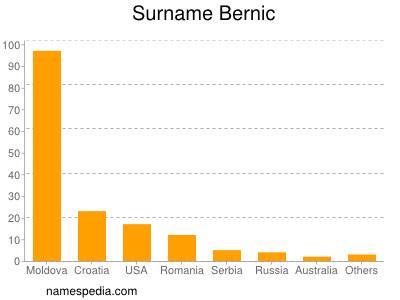 Surname Bernic