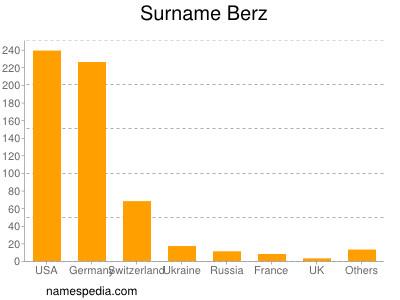 Surname Berz