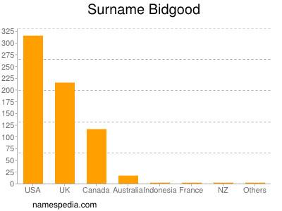 Surname Bidgood