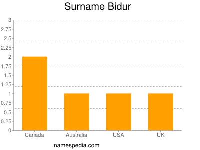 Surname Bidur