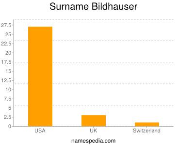 Surname Bildhauser