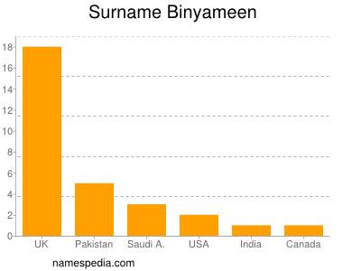 Surname Binyameen