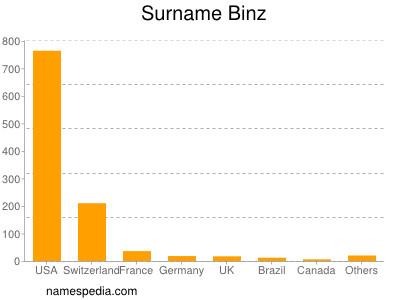 Surname Binz