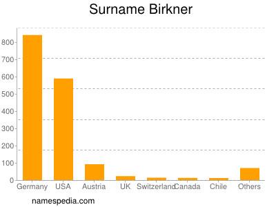 Surname Birkner