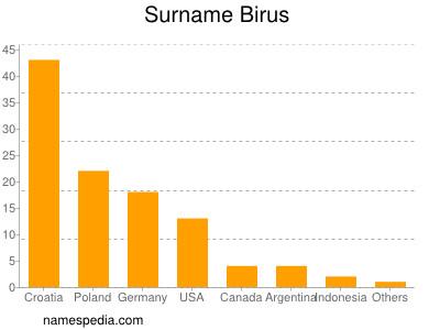 Surname Birus