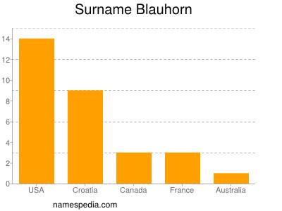 Surname Blauhorn