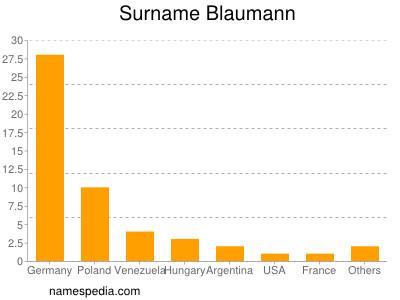 Surname Blaumann