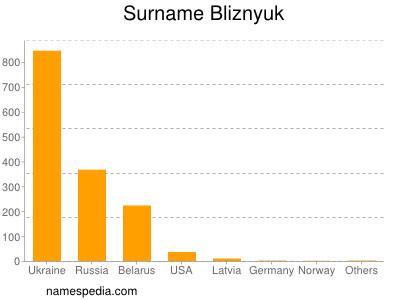 Surname Bliznyuk