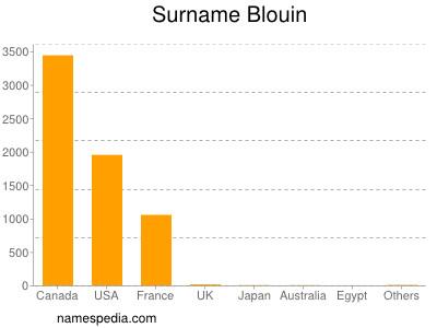 Surname Blouin