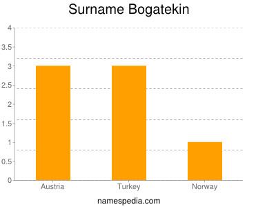 Surname Bogatekin