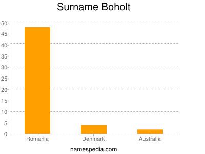 Surname Boholt