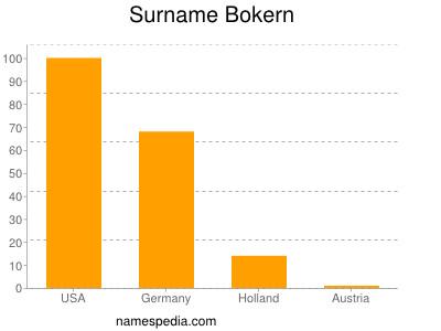 Surname Bokern