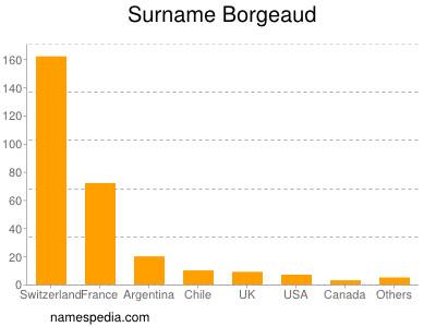 Surname Borgeaud