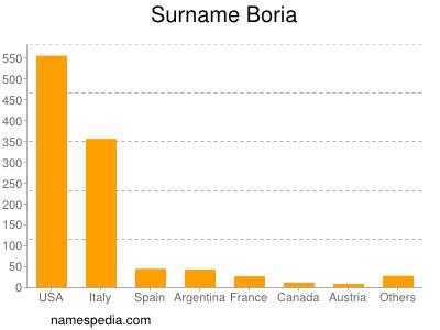 Surname Boria