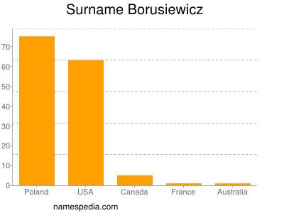 Surname Borusiewicz