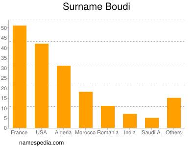 Surname Boudi