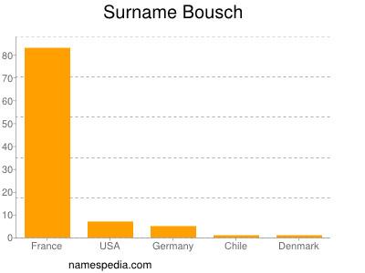 Surname Bousch