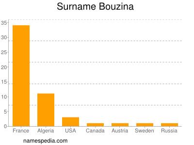 Surname Bouzina