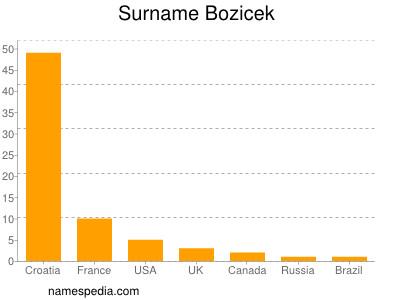 Surname Bozicek
