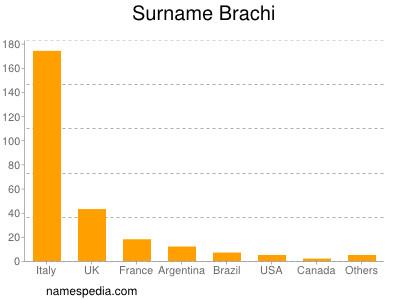 Surname Brachi