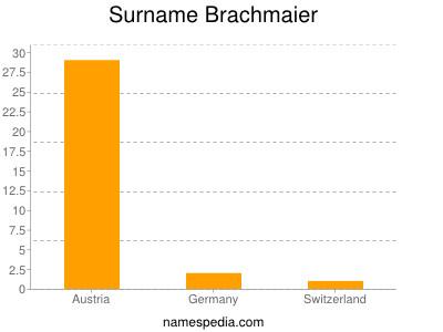 Surname Brachmaier