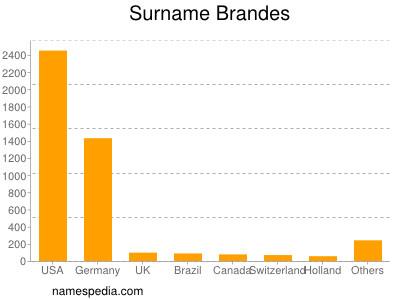 Surname Brandes